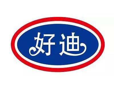 广州好迪集团